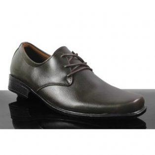 Sepatu pantofel chester crocodile pria